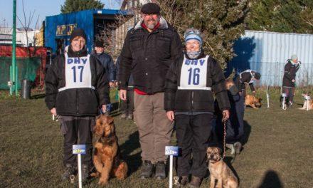 Ergebnisse VDH Deutsche Meisterschaft IPO/FH 2018 am 23.-25. Februar 2018 in 68535 Edingen-Neckarhausen