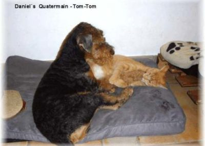 Daniels_Quatermain_TomTom1
