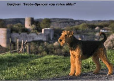 FrodoSpencer2