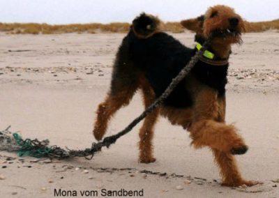 Mona_Sandbend7