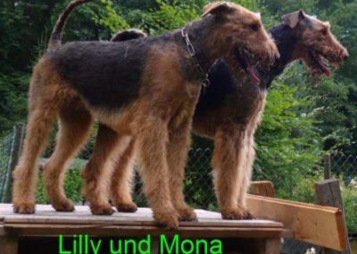 Mona_Sandbend9b
