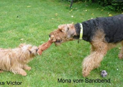 Mona_VictorPN815_058Pro1__2_