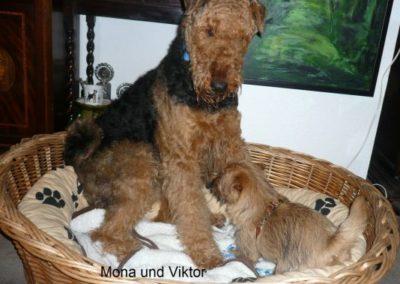 Mona_Viktor1
