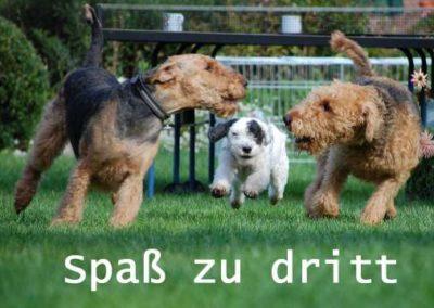 Spaa_zu_dritt1