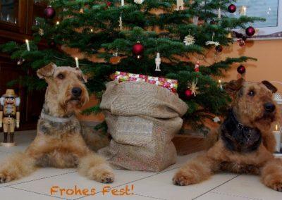Weihnachten_231214