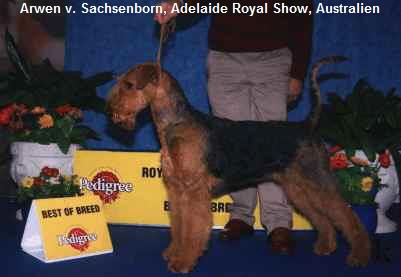 a_Arwen_BOB_Adelaide_2004