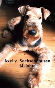 a_Axel_Sachsenhausen3