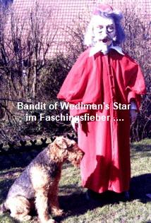 a_Bandit_Wedimans_Star