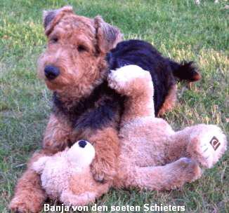 a_Banja_soetenSchieters1
