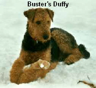 a_Busters_Duffy