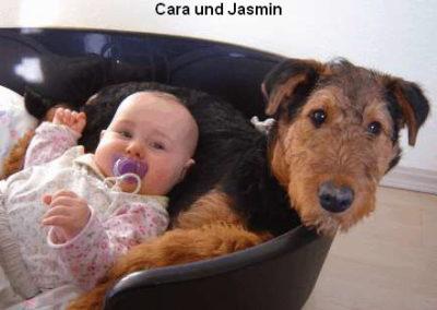 a_Cara_Jasmin1