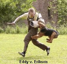 a_Eddy_Erikson_Schutzdienst5