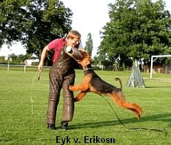 a_Eyk_Erikson_Schutzdienst2