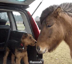 a_Hannah1