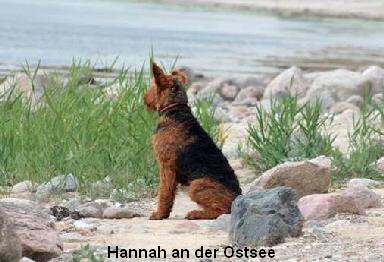 a_Hannah2