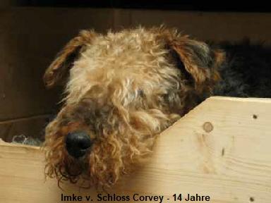 a_Imke_Schloss_Corvey_14