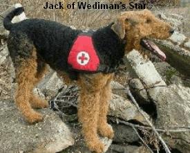a_Jack_Wedimans_Star1
