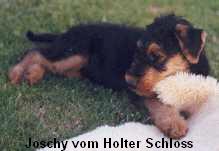 a_JoschyHolterSchloss1