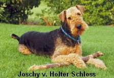 a_JoschyHolterSchloss2