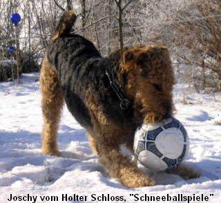 a_Joschy_Holter_Schloss