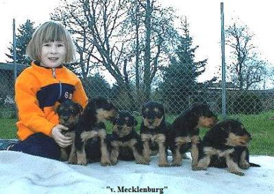a_Mecklenburg1