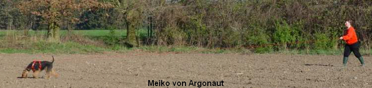 a_MeikoArgonaut25c