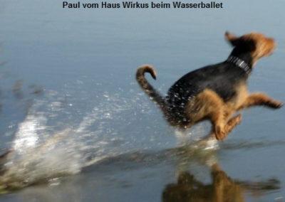 a_Paul_Haus_Wirkus1