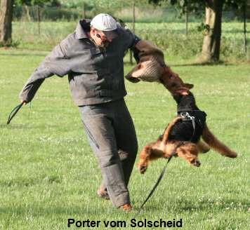 a_Porter_Solscheid6