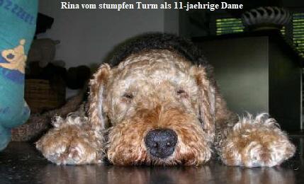 a_Rina_stumpferTurm4