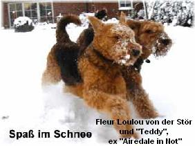 a_Spass_im_Schnee