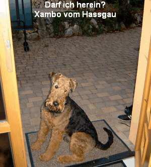 a_Xambo_vom_Hassgau1