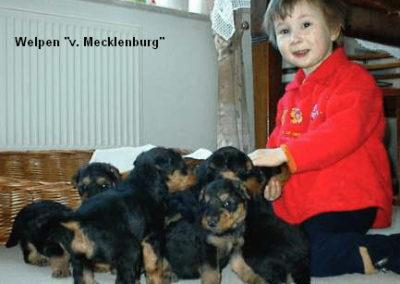 a_von_Mecklenburg