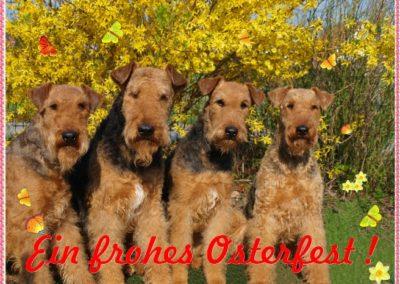 happy_ostern__1_
