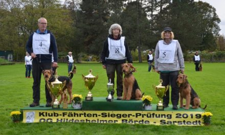 Klub-Fährtenhund-Siegerprüfung und Bundesausscheid IGP/FH am 26./27.10.2019 in Sarstedt
