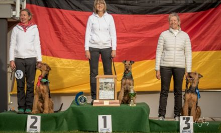 Klub-Siegerprüfung Obedience am 20.10.2019 in Ellwangen