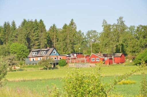 URLAUB mit Hund in Südschweden