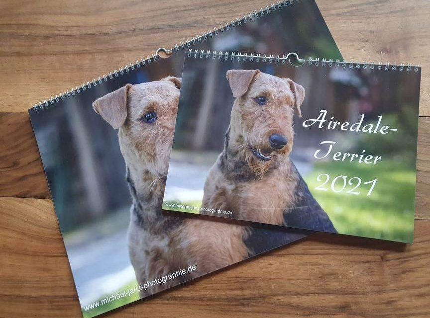 Airedale Kalender 2021